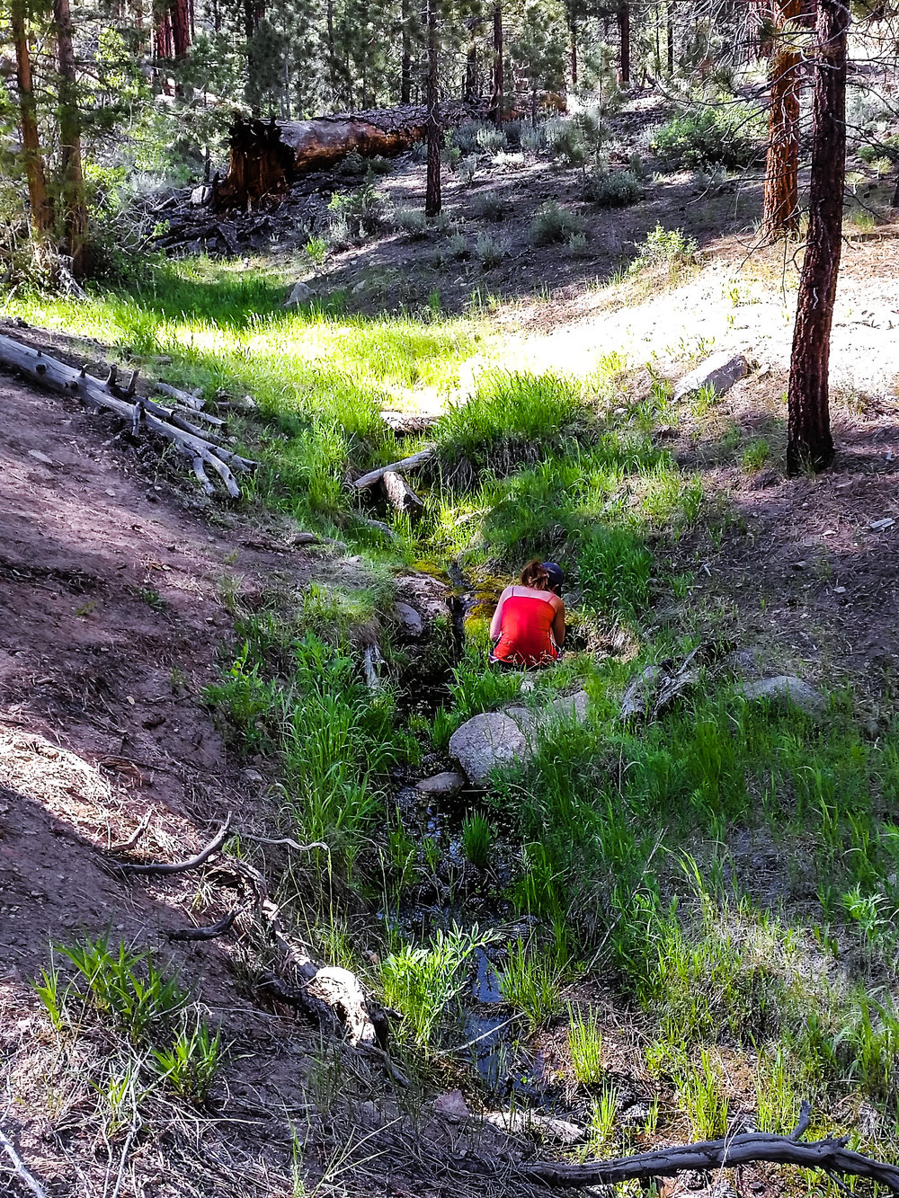 Even in the southern portion of the Sierra, water was scarce