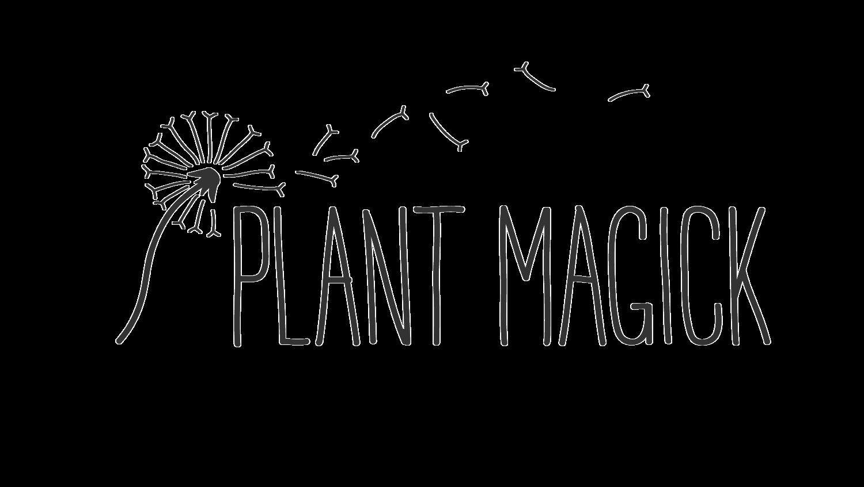 Restorative Yoga + Yoga Nidra Meditation — Plant Magick