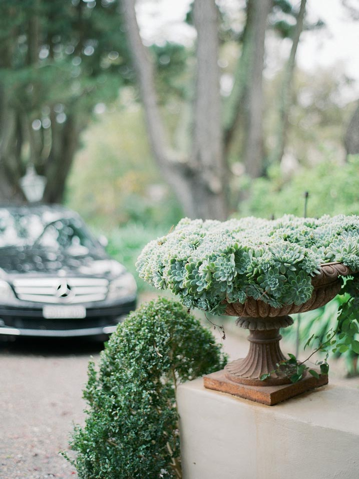 An Intimate and Romantic Rainy Day Wedding - Photographer - Amelia Soegijono Photography & Friends - Photography Shoot - Shot - Succelents at the drive.jpg