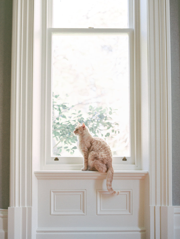 Hopewood House - Romantic Winter Wedding Shoot - Lilli Kad Photography - Shot - Cat Residence.jpeg