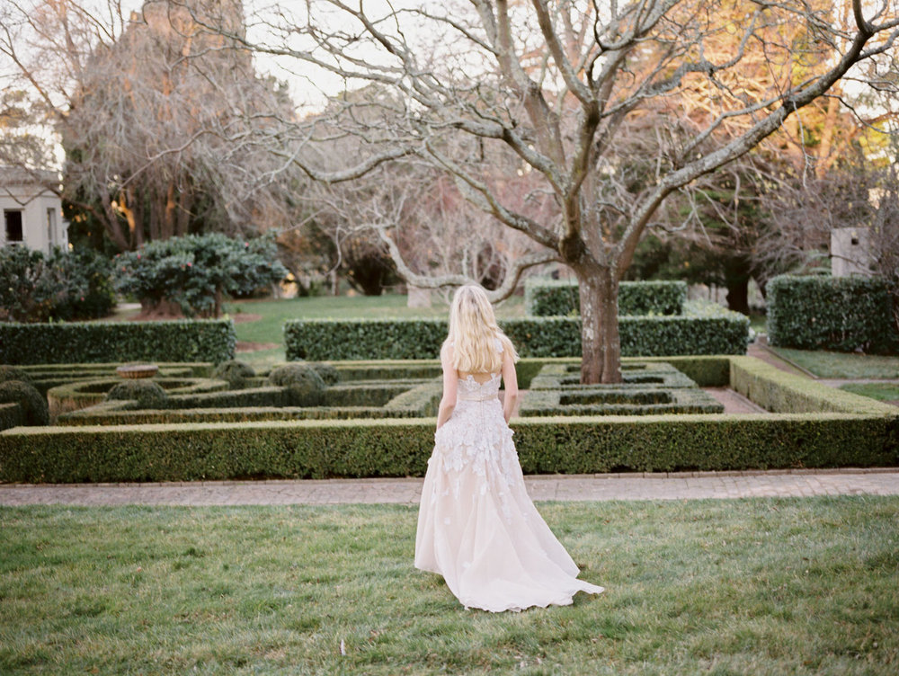 Hopewood House - Romantic Winter Wedding Shoot - Lilli Kad Photography - Shot - Garden Hedge maze.jpeg