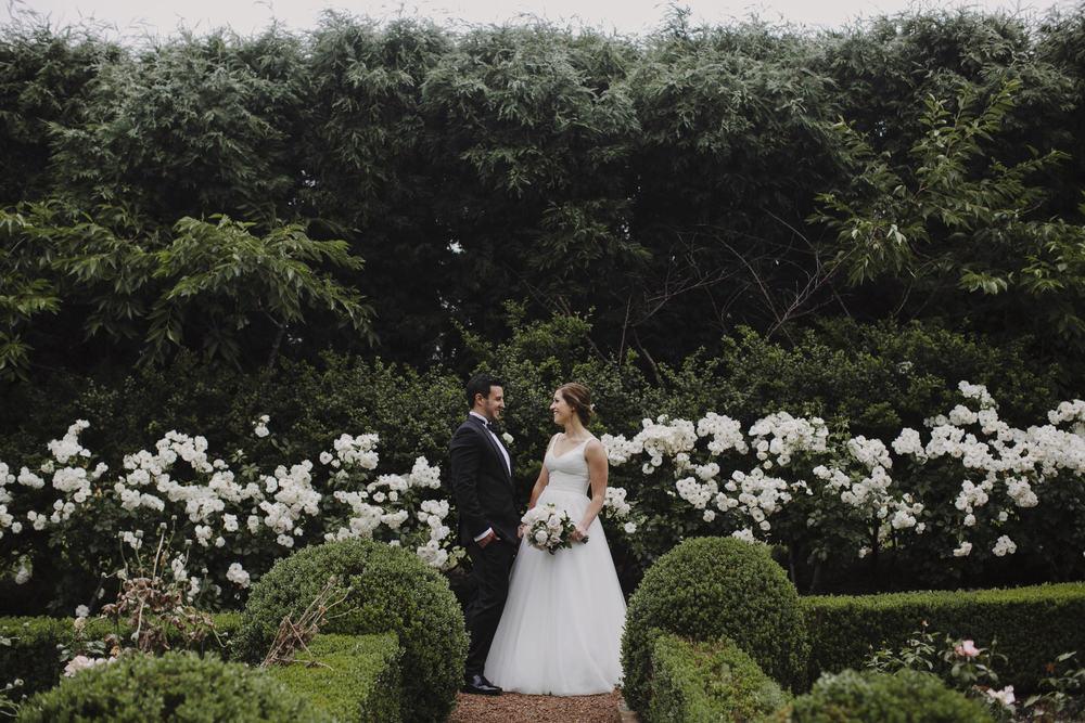 Justin Aaron Photography - Elizabeth & Damien  - Hopewood House - Wedding Gallery - Couple Hedge Maze Couple.jpeg