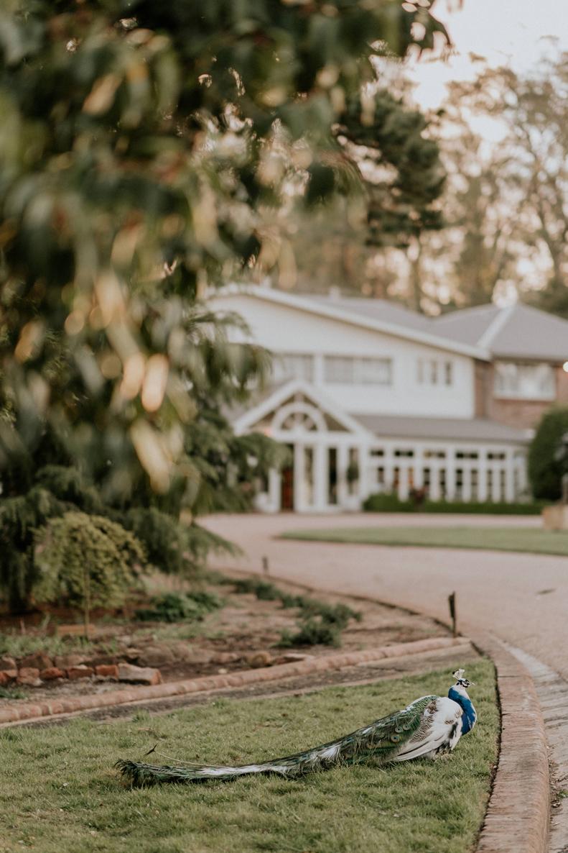 James Day Photography - Hopewood House - Bowral - Southern Highlands - Matt and Mryia Wedding 201800682.jpg