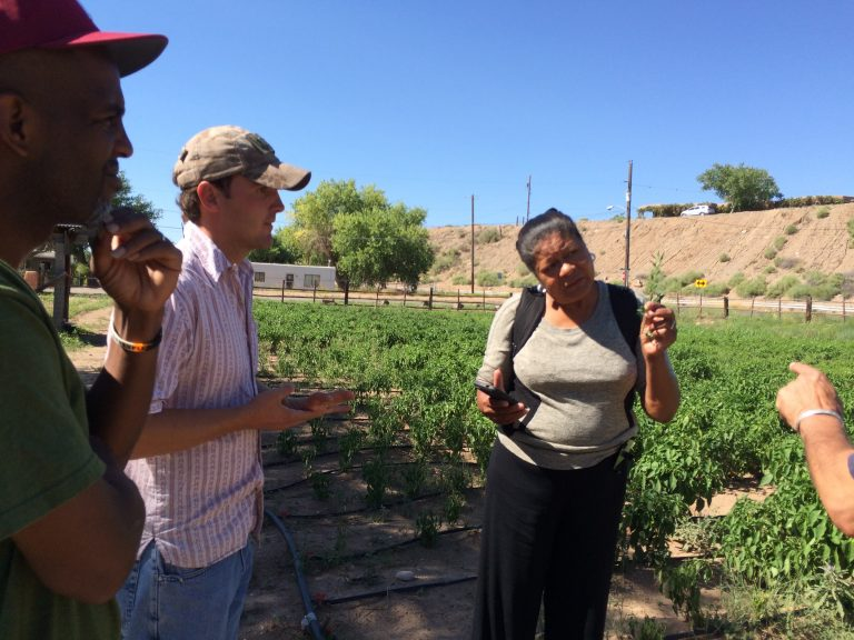 Barbara in Atrisco, NM helping to train other Veteran farmers in the Rural Coalition
