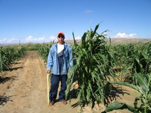 Mike standing next to a tall cornstalk