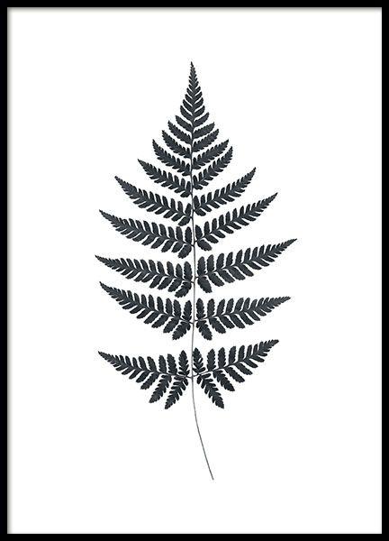 Fern Poster, Desenio