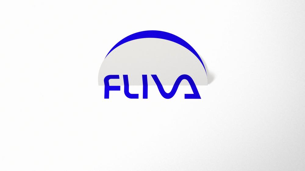FLIVA (0-00-03-00).png