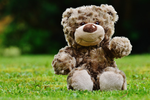 If you go down to the woods today... you could organise a Teddy Bears Picnic with friends for a family-friendly fundraiser