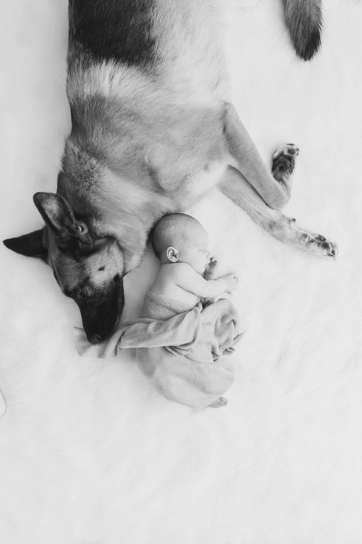 Austin_TX_Newborn_Photographer_KBP014.jpg