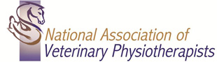 NAVP-logo.jpg