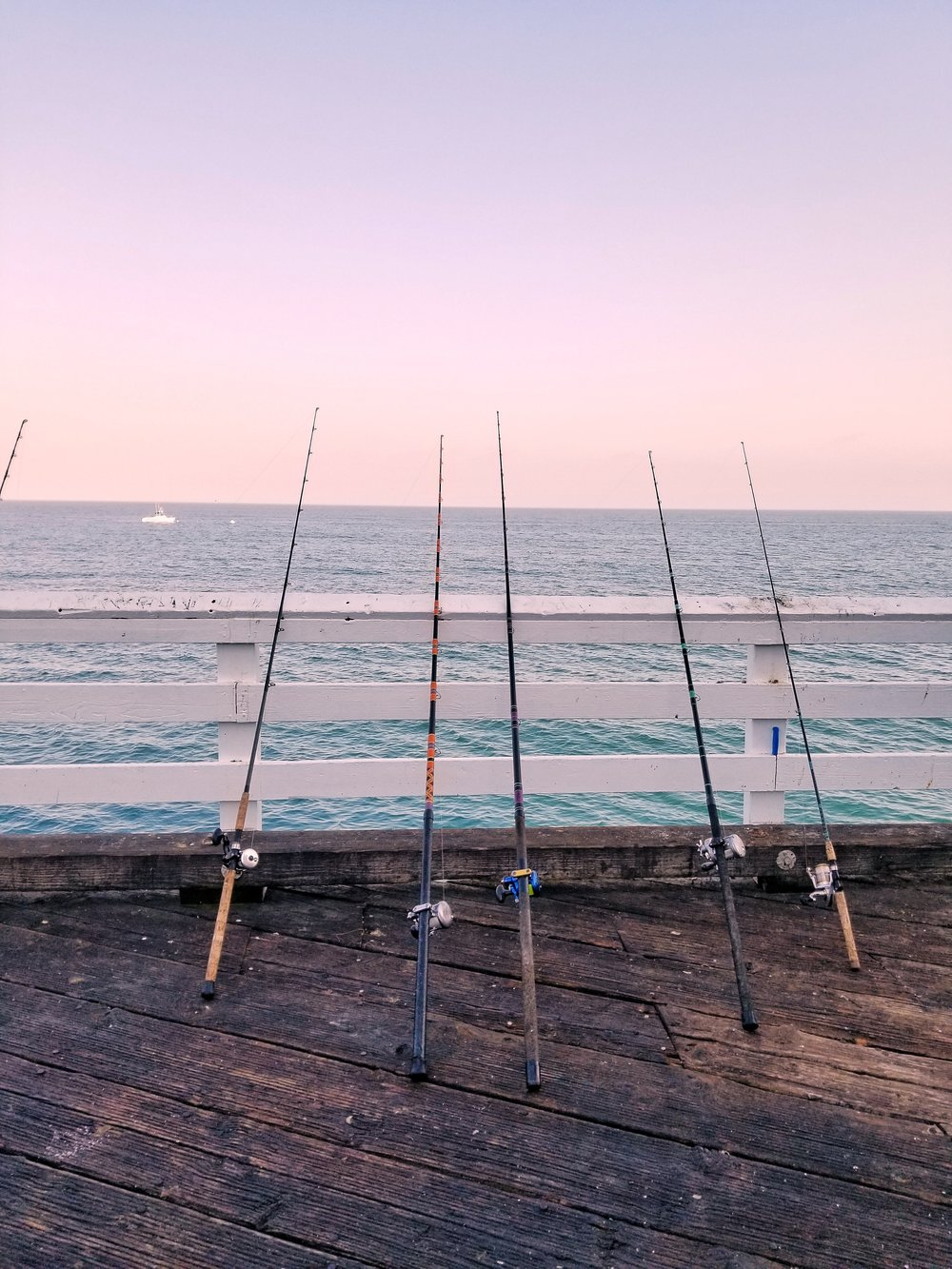 fishing-rods.jpg