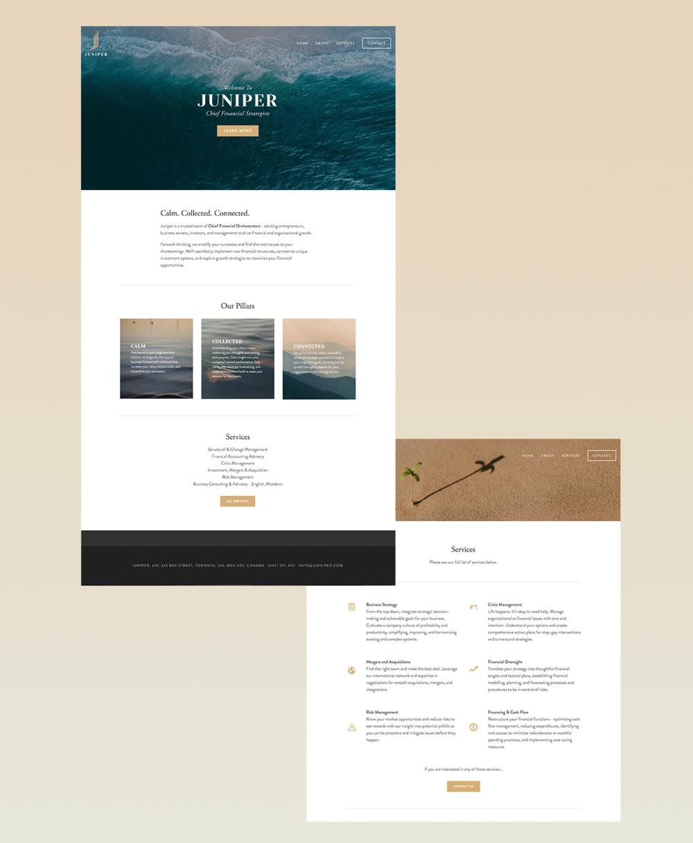 juniper-website-mockup-2.png