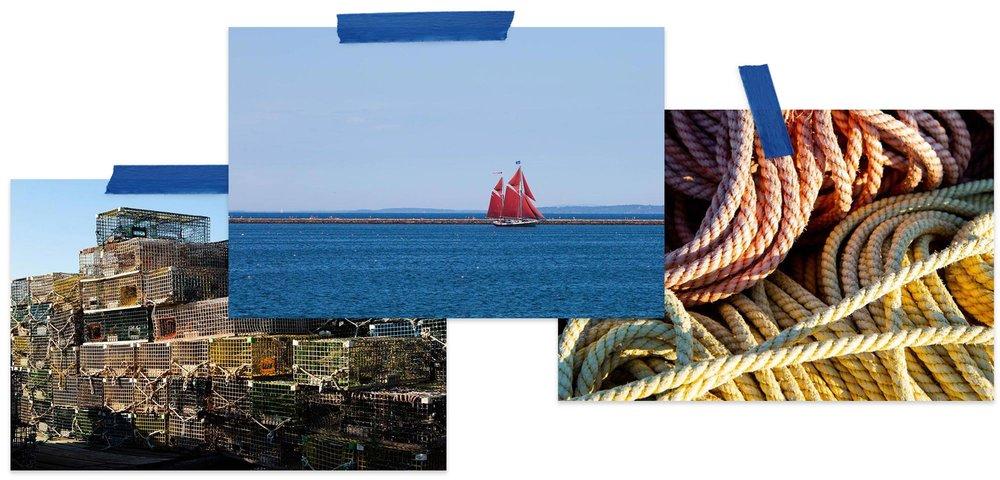 photos.02.jpg