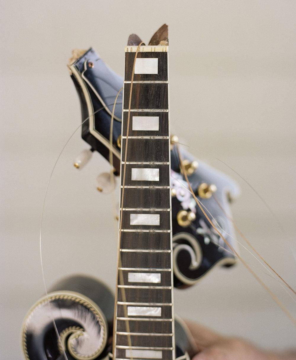 Bluegrass_website_11.jpg