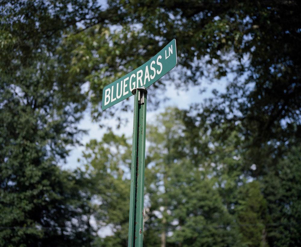 Bluegrass_website_48.jpg