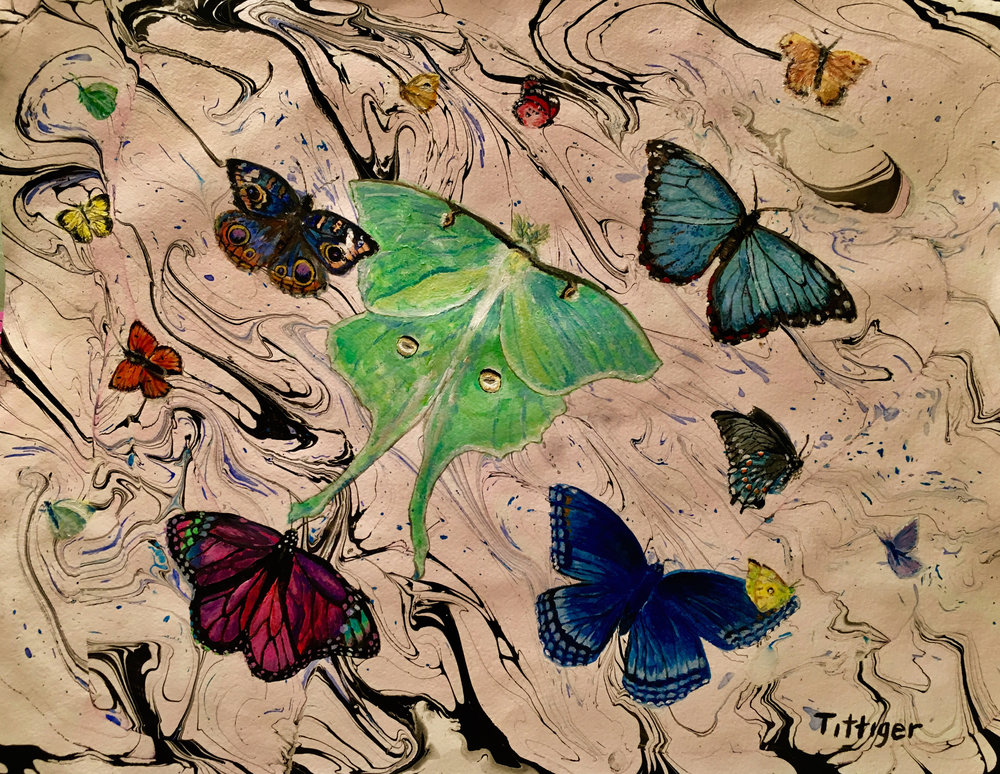 BUTTERFLY COLLECTION 16 X 20 Acrylic Marbling and Painting.