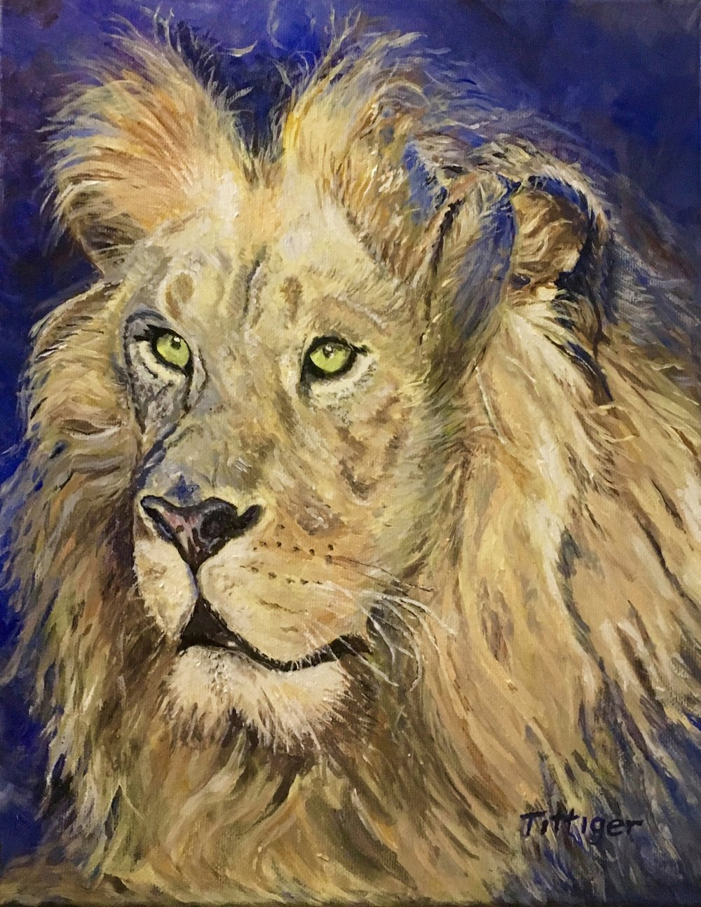 JUDAH    Judah is an 11 x 14 Acrylic Painting. I call it Judah in reference to the Lion of the tribe of Judah.