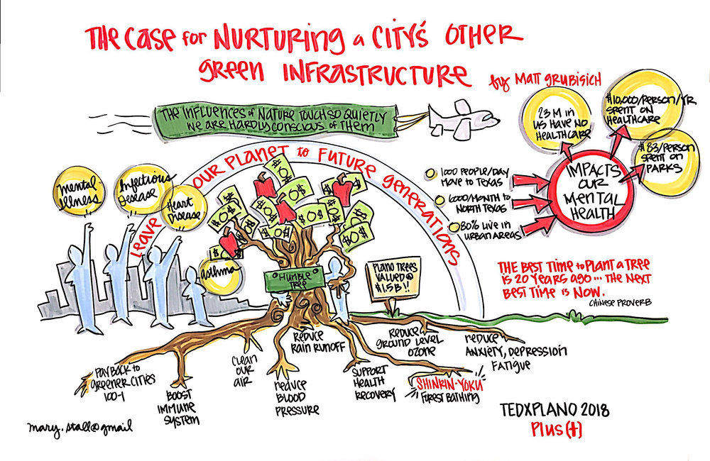 The Case for Nurturing a Citys Other Green Infrastructure.jpg