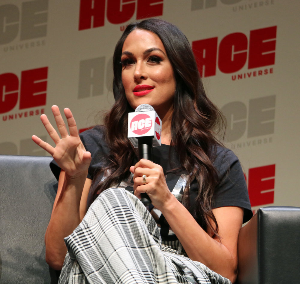 Brie Bella said a dream match for her would be for her and Daniel Bryan to wrestle Randy Savage and Elizabeth.