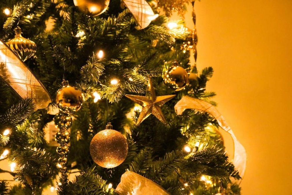 Christmas Tree Tips from Find Your Way Home Tulsa OK Real Estate (small).jpg