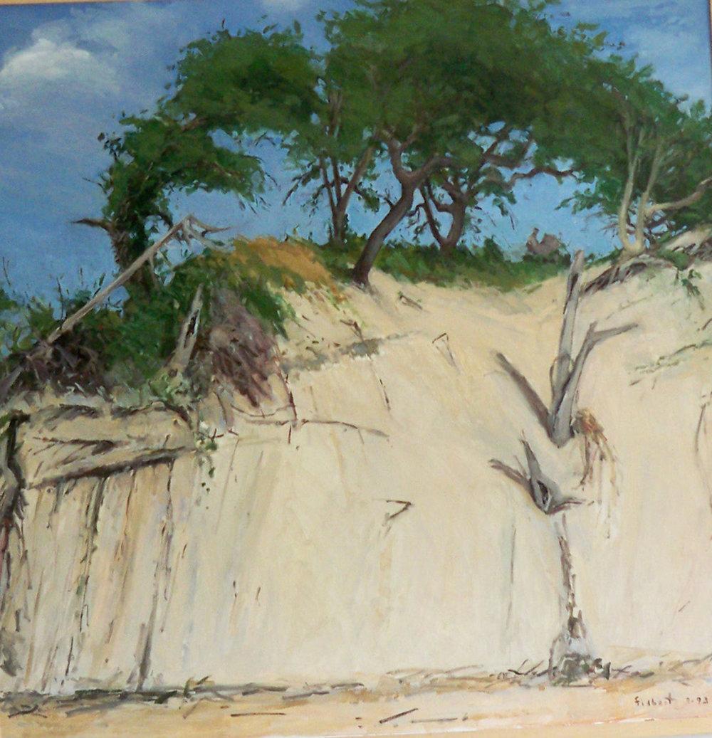 Higbee's Beach I