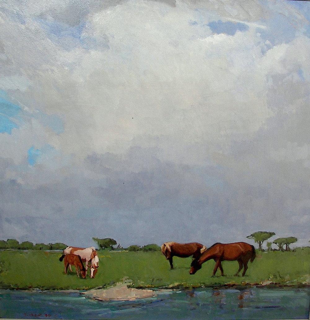 Asseteague Island