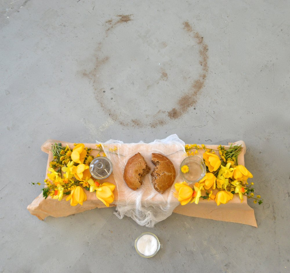 Fertile Loaf   Multimedia installation and performance  Homemade Beltane bread, ashes from Beltane fire, collected rainwater, salt, cheesecloth, muslin, yellow flowers picked for Beltane: Tulips, Daffodils, Dandelions, Narcissus.  2015
