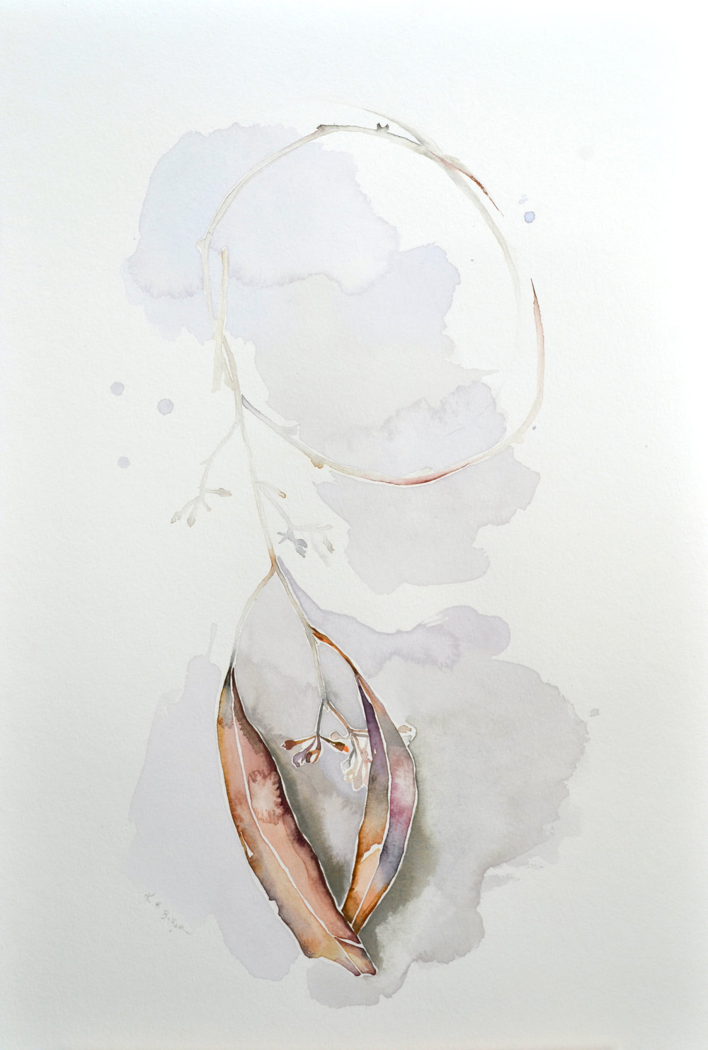Eucalyptus II, Watercolor on paper, 18%22 x 12%22.jpg
