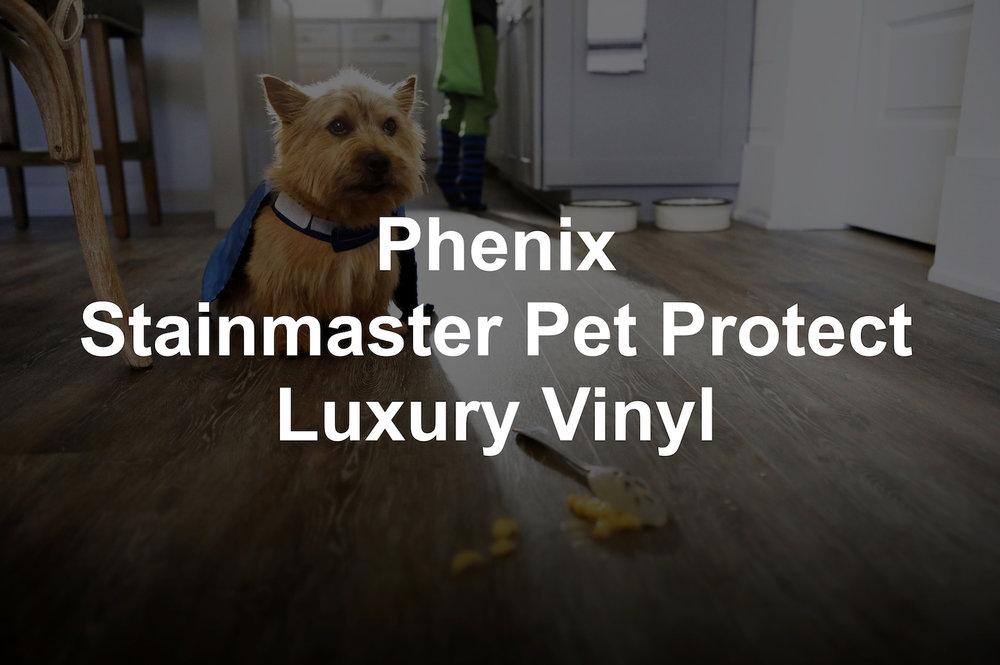 Phenix SM LVP.jpg