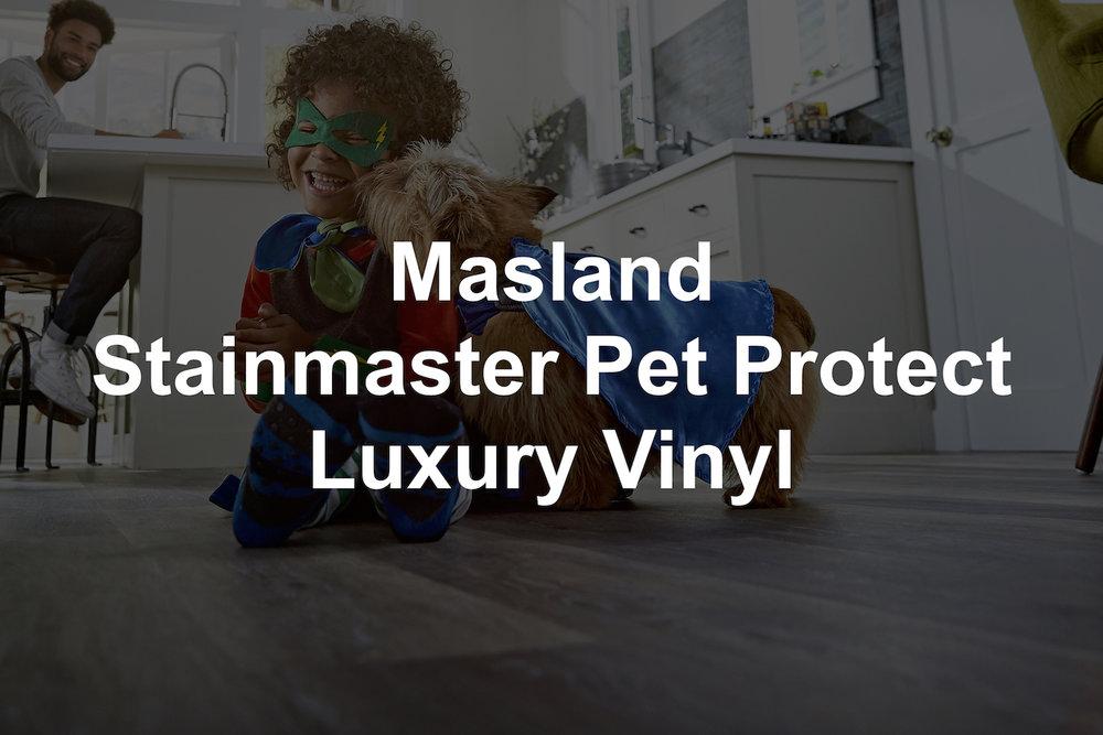 Masland SM LVP.jpg