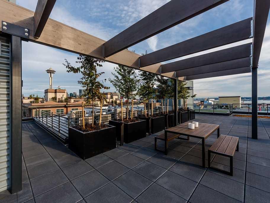 cora rooftop 2.jpg