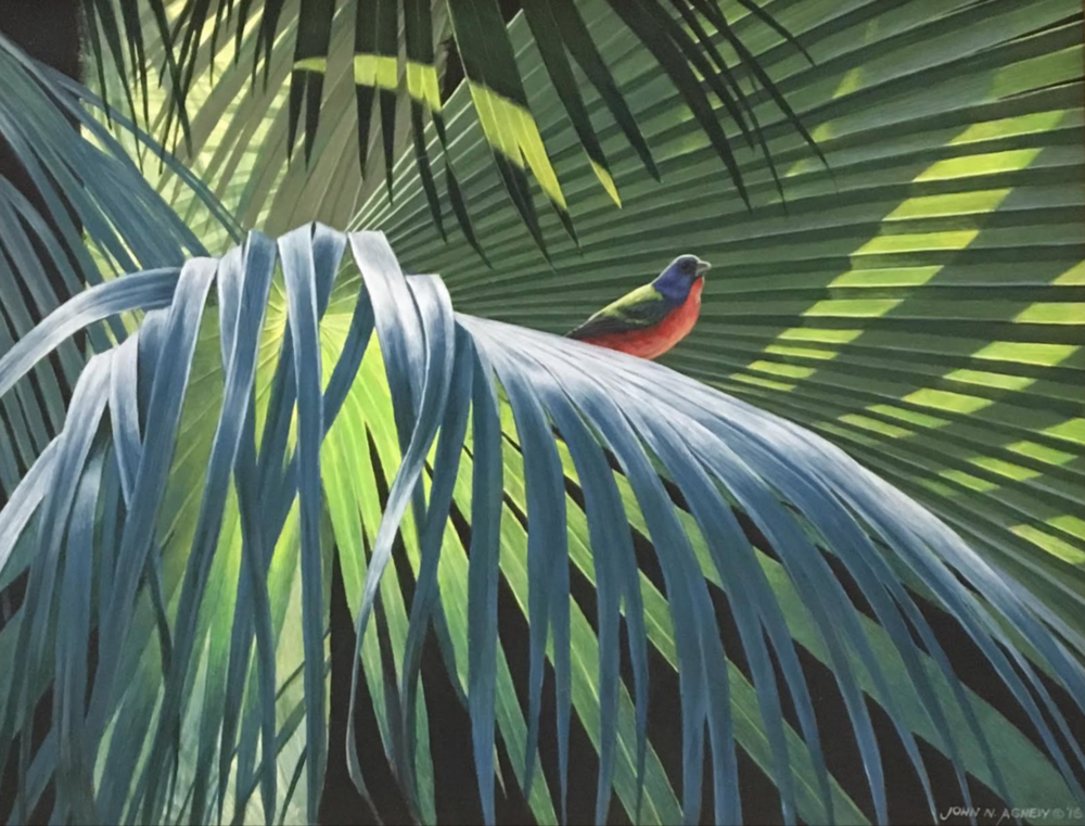 JOHN H. AGNEW, PAINTED BUNTING ON PALM  ACRYLIC ON BOARD, 11 IN. X 14 IN.
