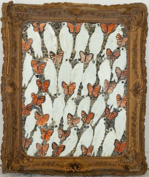 Untitled (Doves and Butterflies)