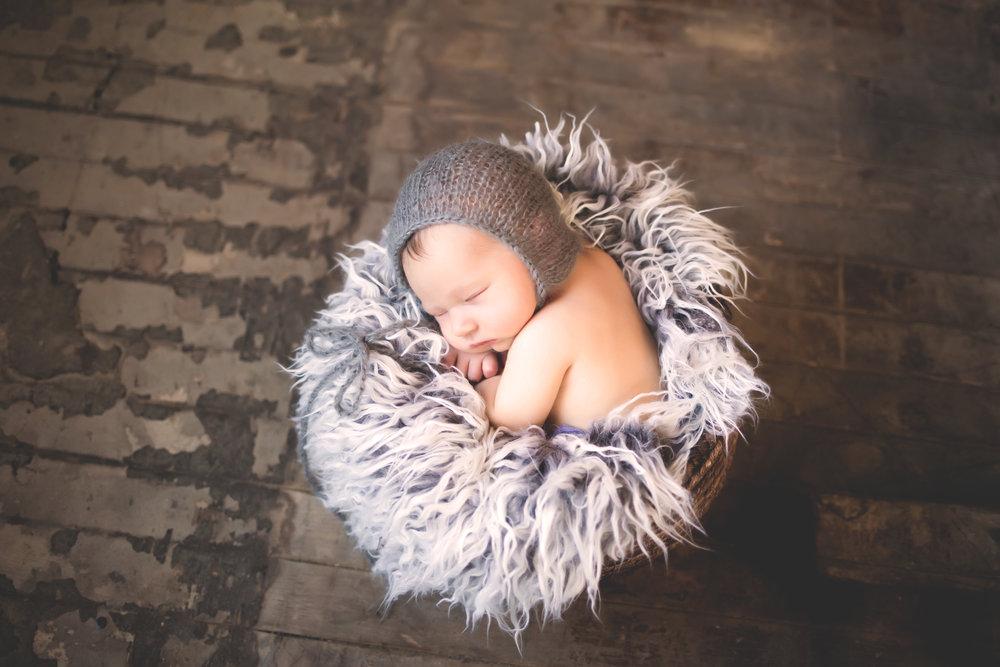 newborns - view gallery