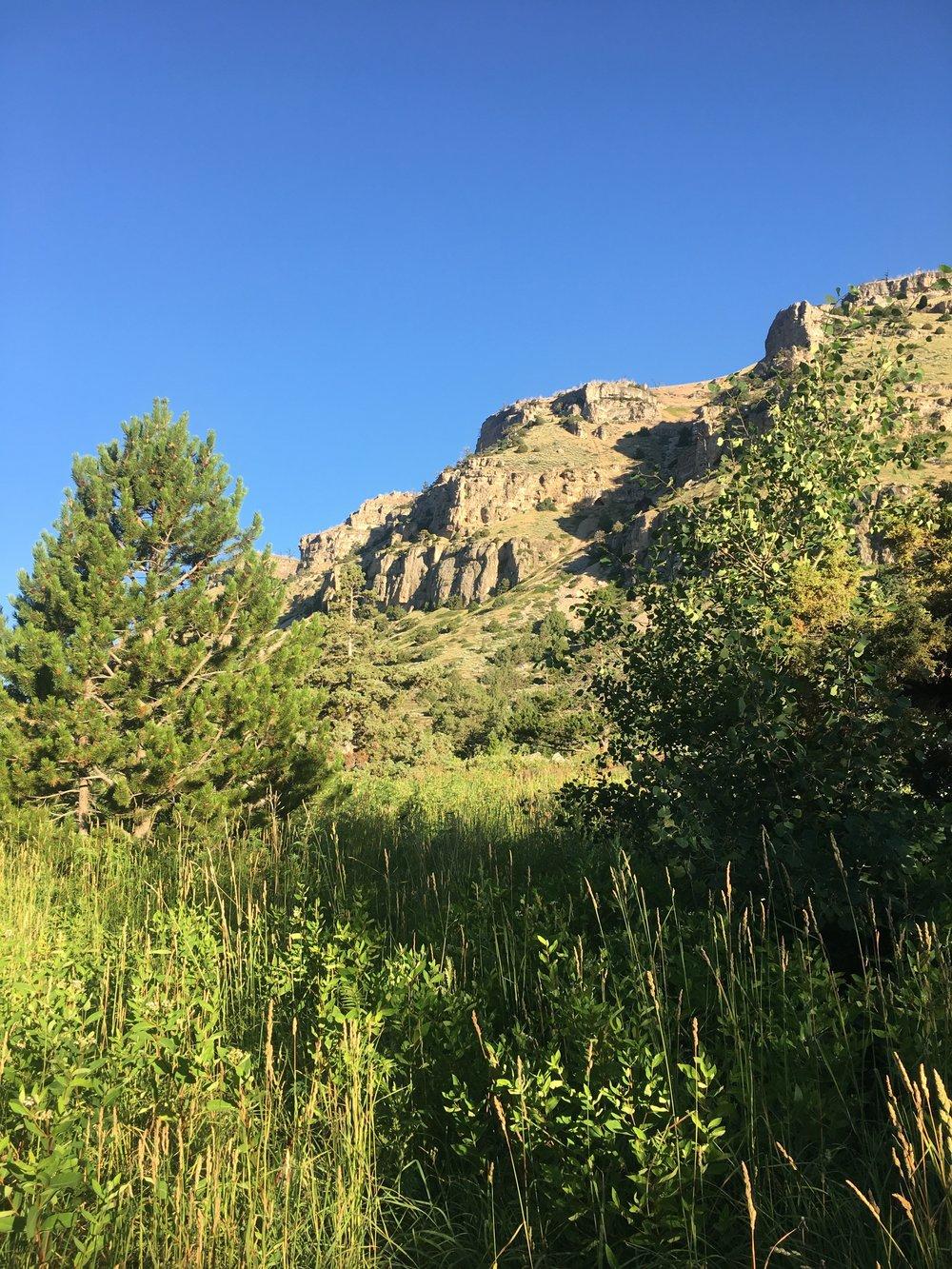 cliff-wyoming-camping-blog.jpg