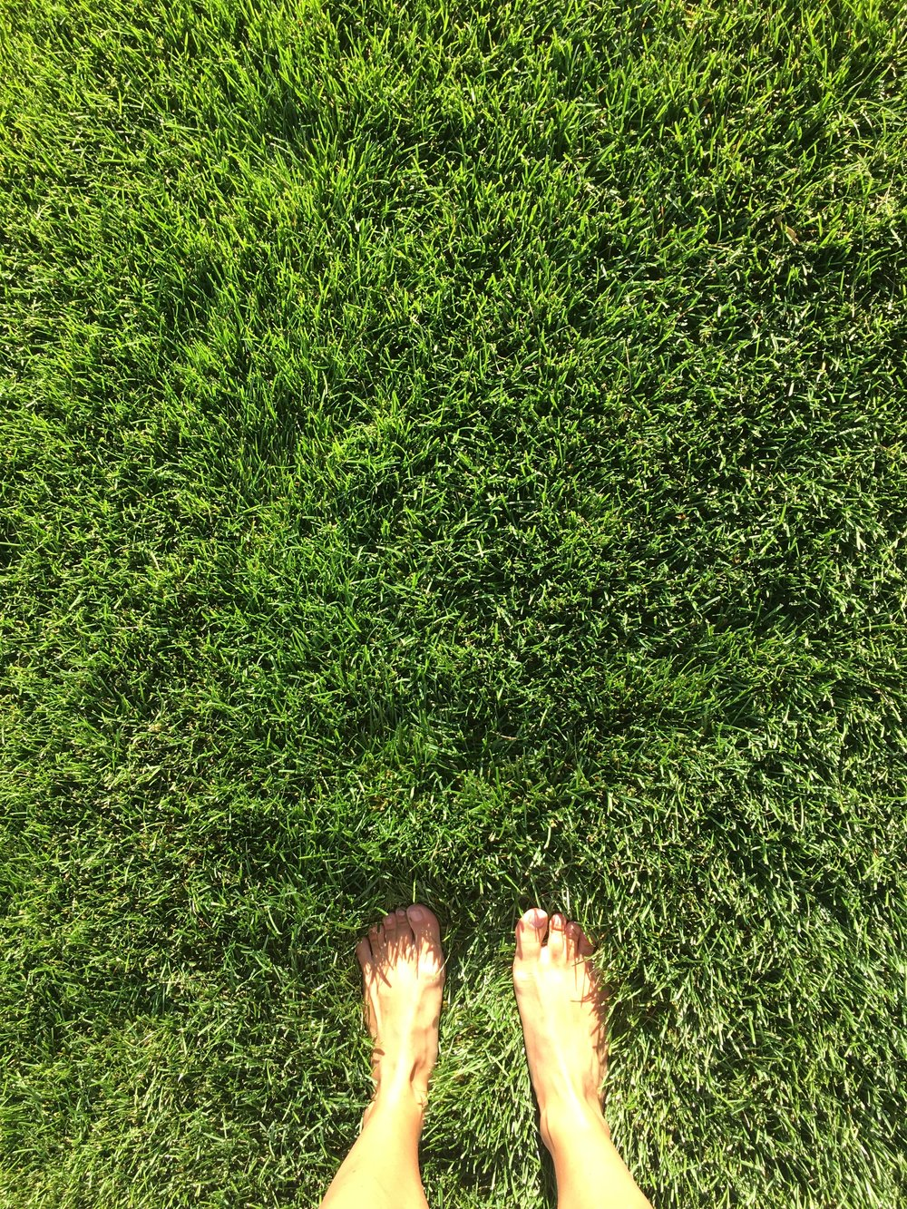 toes-in-grass.jpg