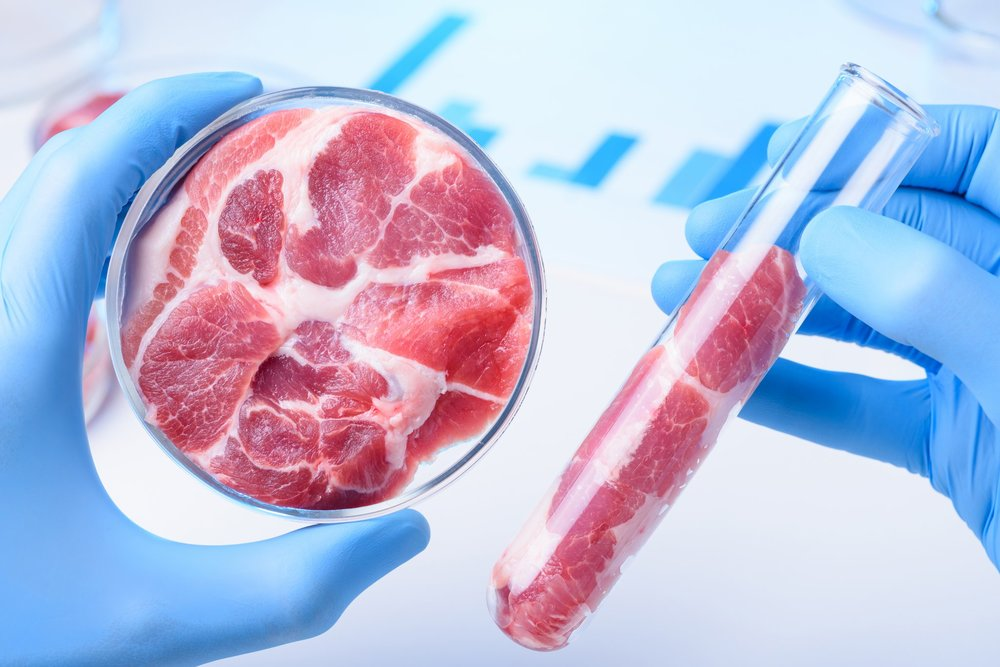 Lab-Grown Meat is Not the Answer - July 10, 2018