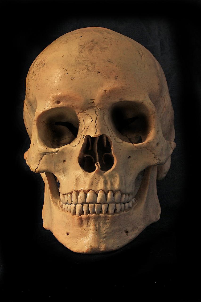 skull-and-crossbones-638784_1280.jpg