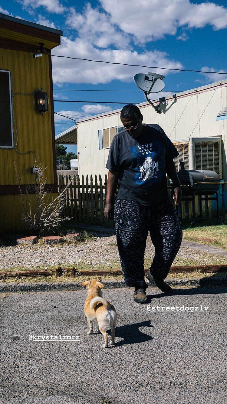 streetdogz_ig_stories_02.JPG