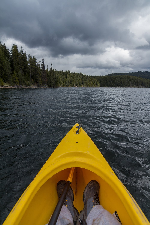 canoe-conifers-daylight-213194.jpg