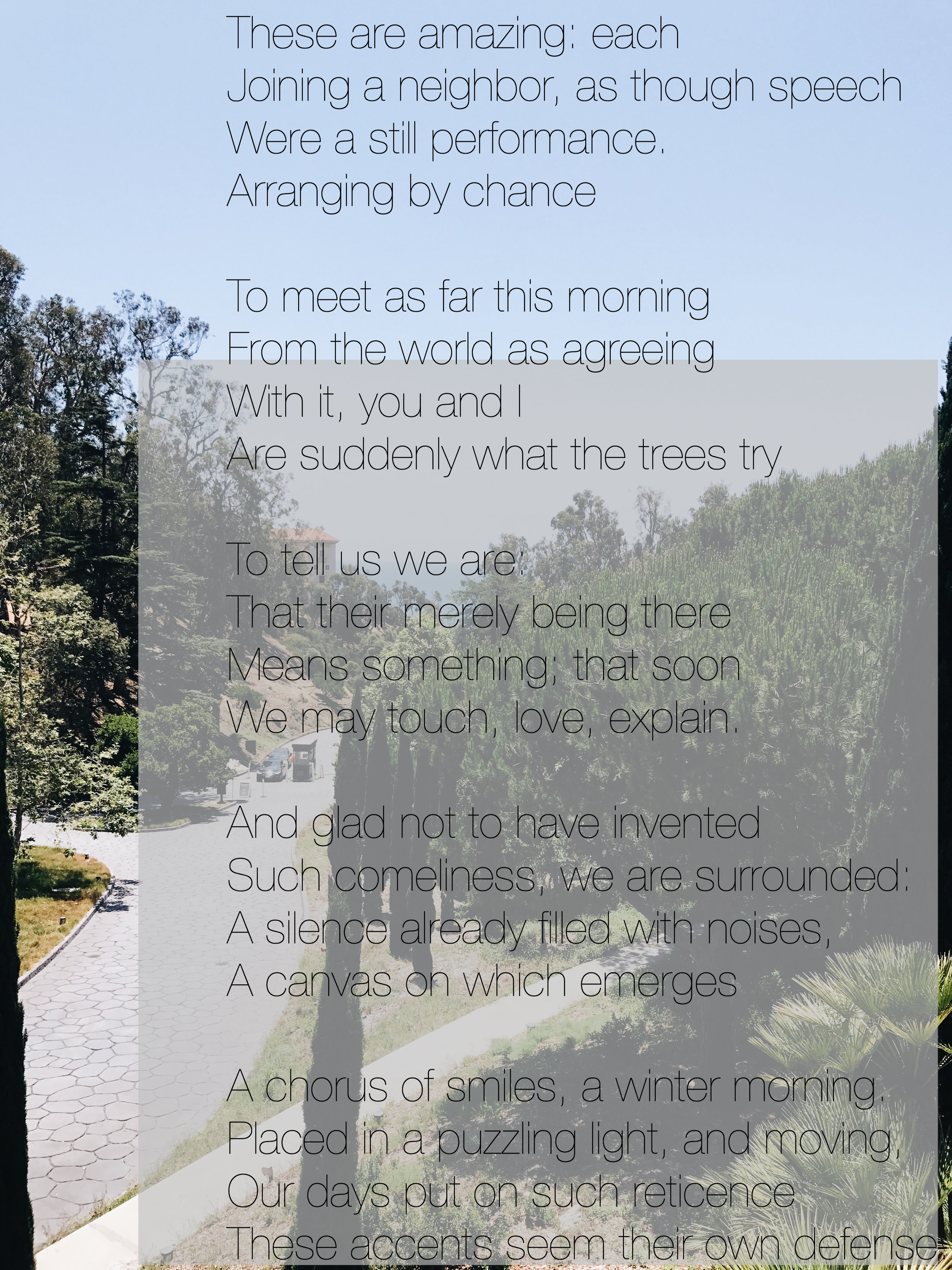 john ashbery some trees new york school poet poem poetry