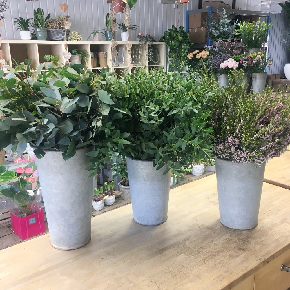 A selection of foliages from The Irish Green Guys