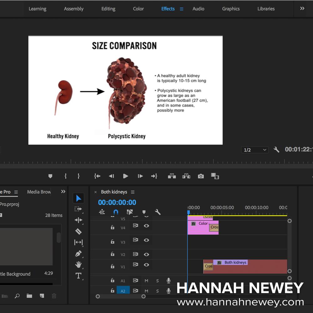 Premiere Pro process shot.png