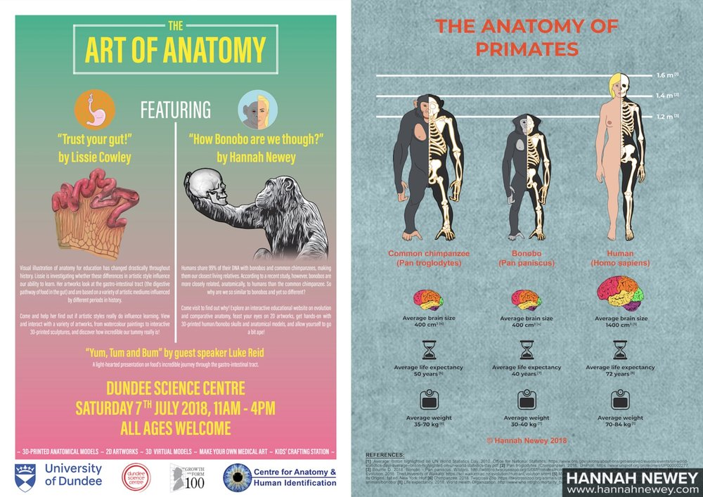 Art of Anatomy Event and Comparative Anatomy Poster_Hannah Newey
