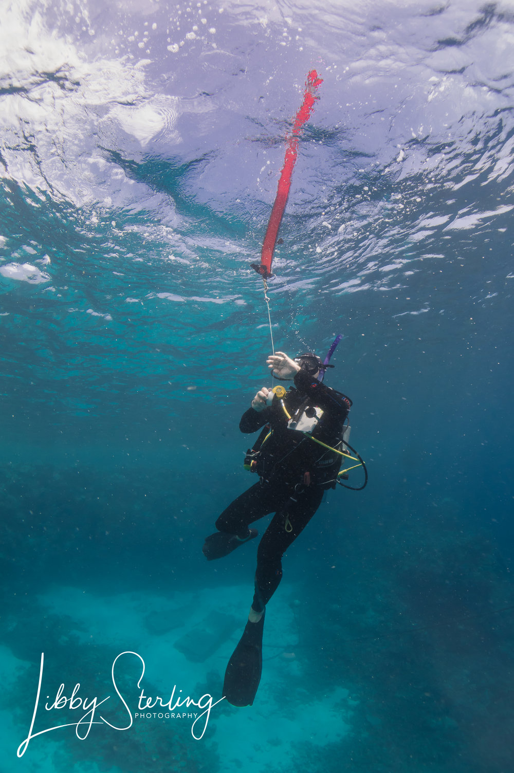 PADI Self-reliant - Such a great course