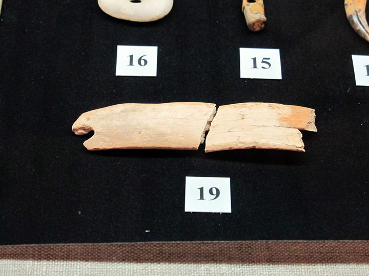 Ivory tiara found in the Denisova Cave in summer 2018.