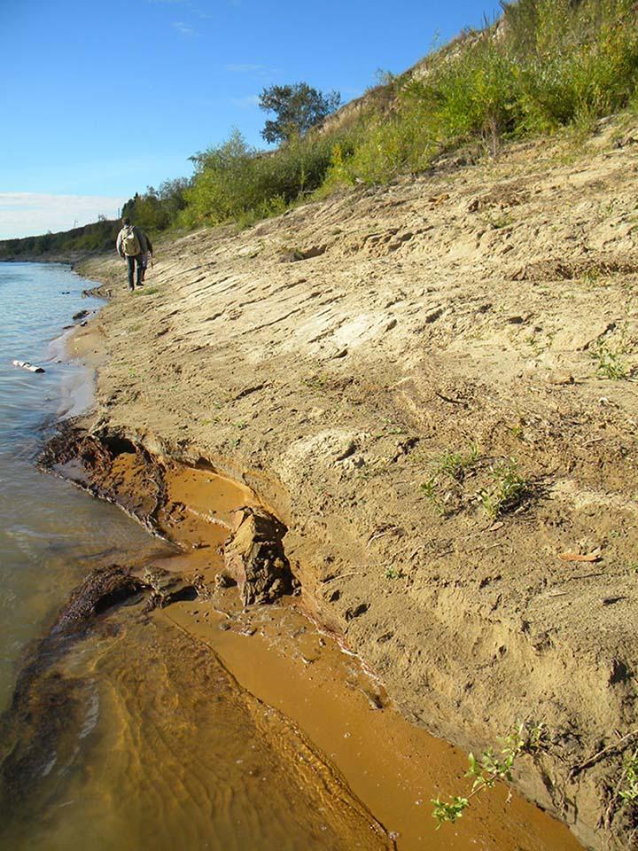Ust'-Ishim bone. Irtysh river bank where the bone was found in 2008. Pictures: Antropogenez