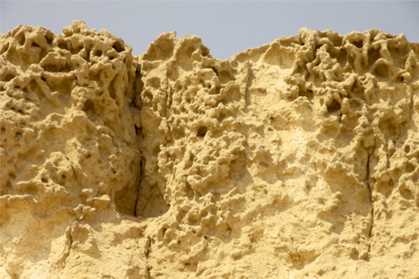 Top block on the Sphinx temple, showing extensive tafoni pitting and grainy flood sediment and alluvium deposits that have accumulated and oozed off the top surface of the temple block, left by the eventual sea regression. This erosion pattern is unique to Giza and shows its pre ancient age.