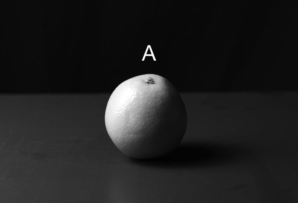 Leica_-2.jpg