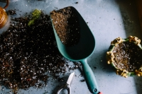 Mud garden soil